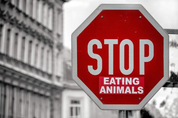 stop-eating-animals-vegane-ernaehrung-umweltschutz-nutri-plus